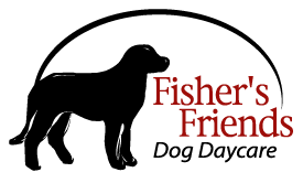 Fisher's Friends